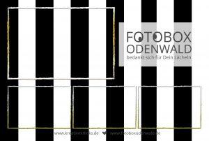 Greenscreen mit Boxo von Fotobox Odenwald - Photobooth - Sofortausdruck - Selfieautomat - Fotoboxodenwald - Kreativ mit links - Foto - Fotoautomat - Geburtstag - Hochzeit - Jubiläum - Firmenfeier - Firmenfest - Mitarbeiter - Höchst - Erbach - Michelstadt - Mömlingen - Aschaffenburg - Dieburg - Groß-Gerau - Groß-Bieberau - Reichelsheim